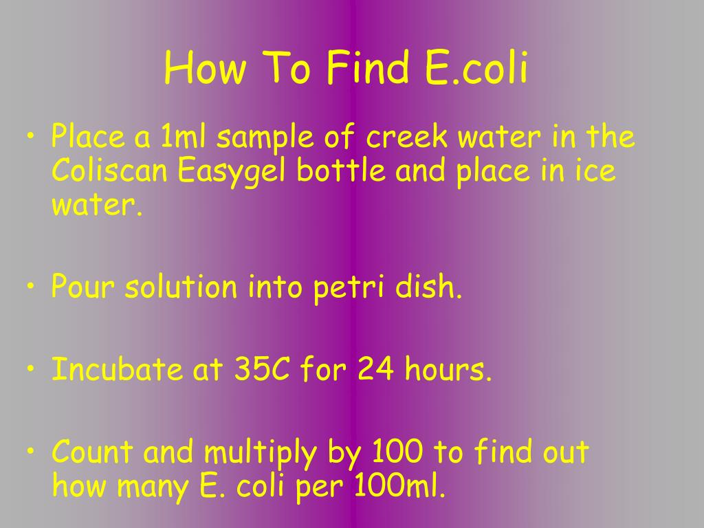 How To Find E.coli
