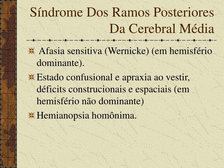 Síndrome Dos Ramos Posteriores Da Cerebral Média