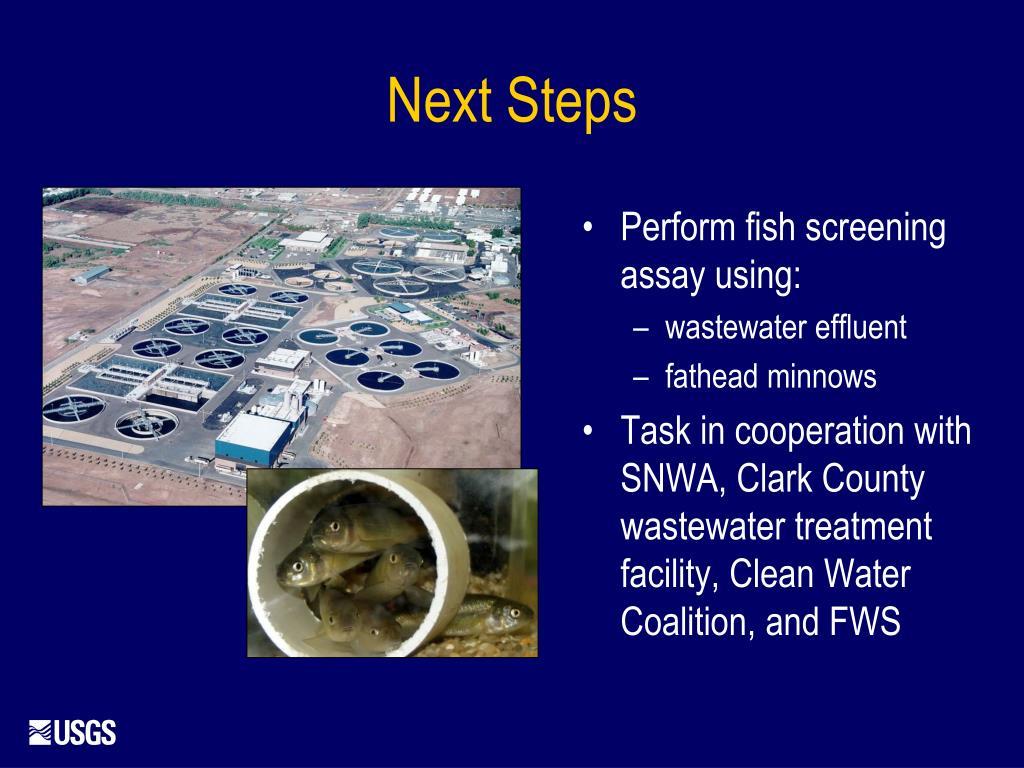 Perform fish screening assay using: