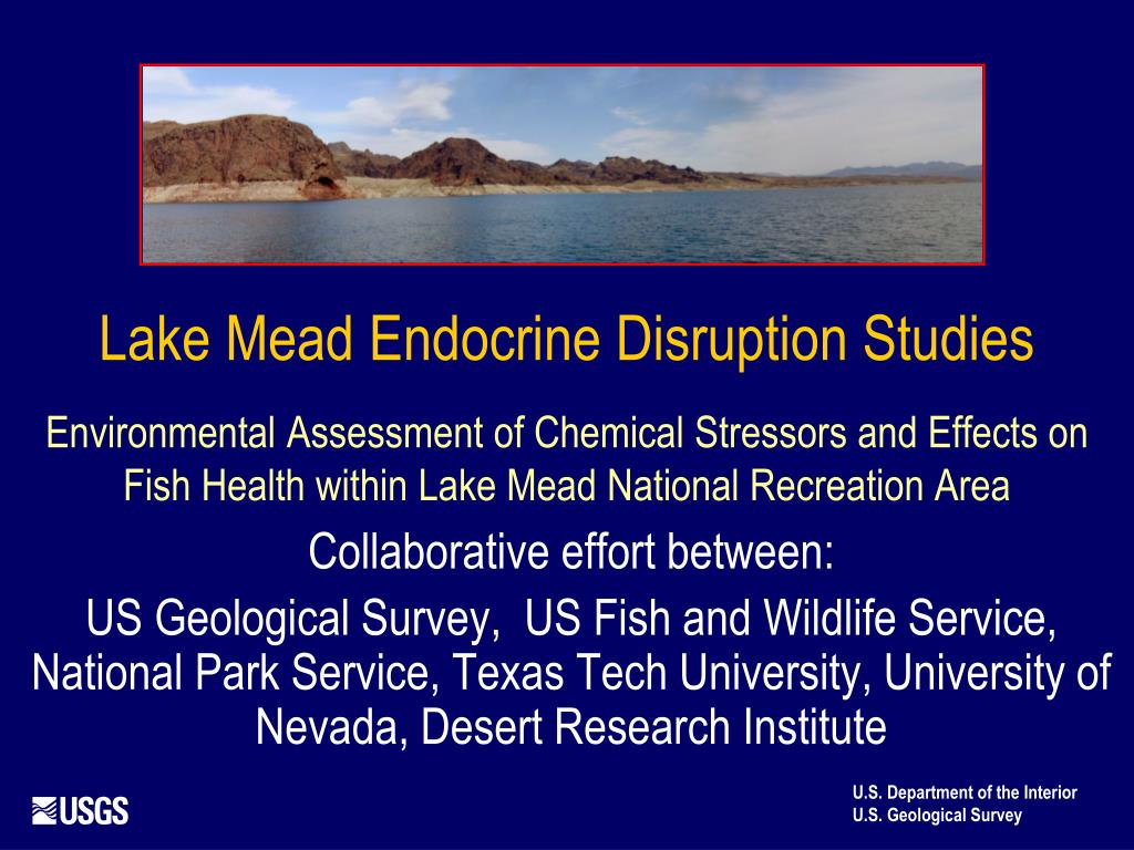 Lake Mead Endocrine Disruption Studies