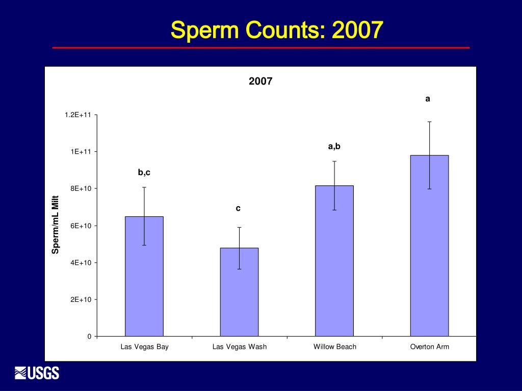 Sperm Counts: 2007