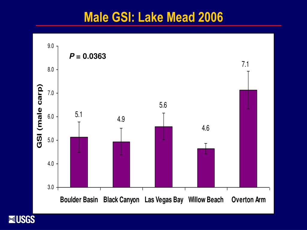 Male GSI: Lake Mead 2006