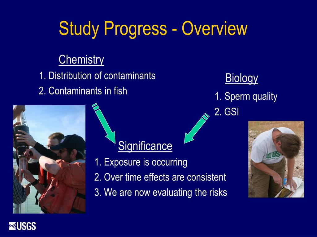 Study Progress - Overview