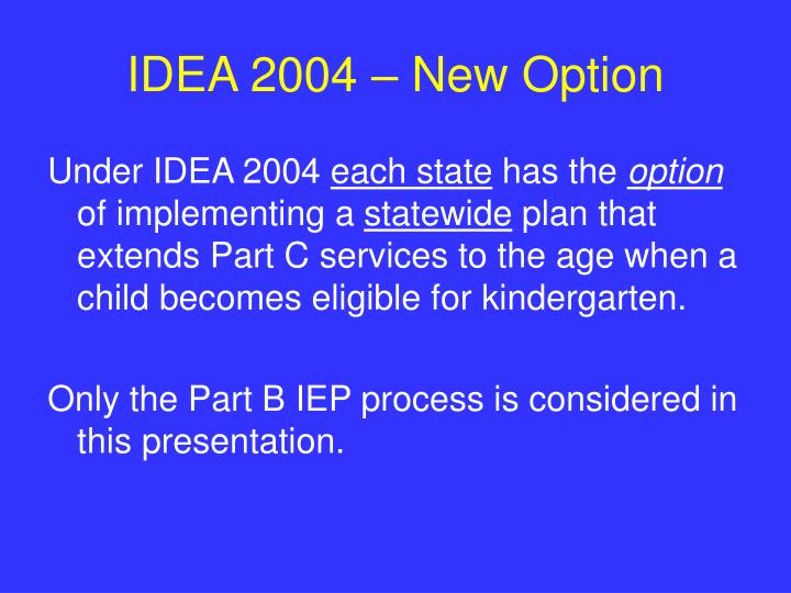 IDEA 2004 – New Option