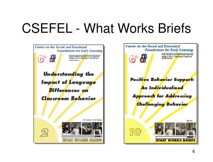 CSEFEL - What Works Briefs