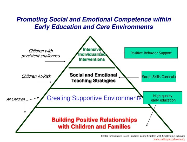 Promoting Social and Emotional Competence within Early Education and Care Environments