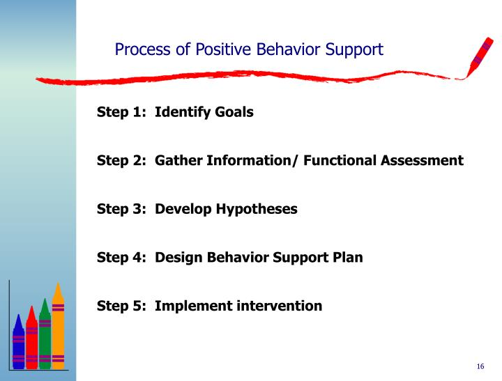 Process of Positive Behavior Support