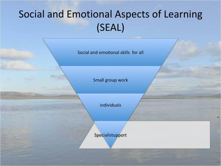 Social and Emotional Aspects of Learning (SEAL)