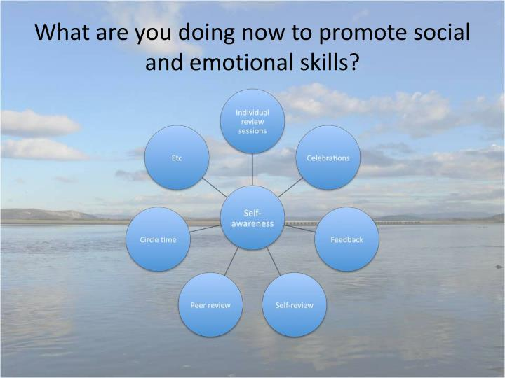 What are you doing now to promote social and emotional skills?