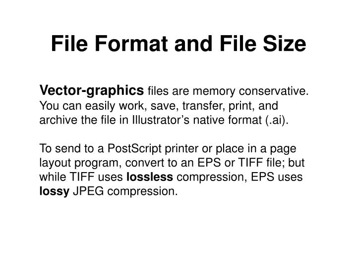 File Format and File Size