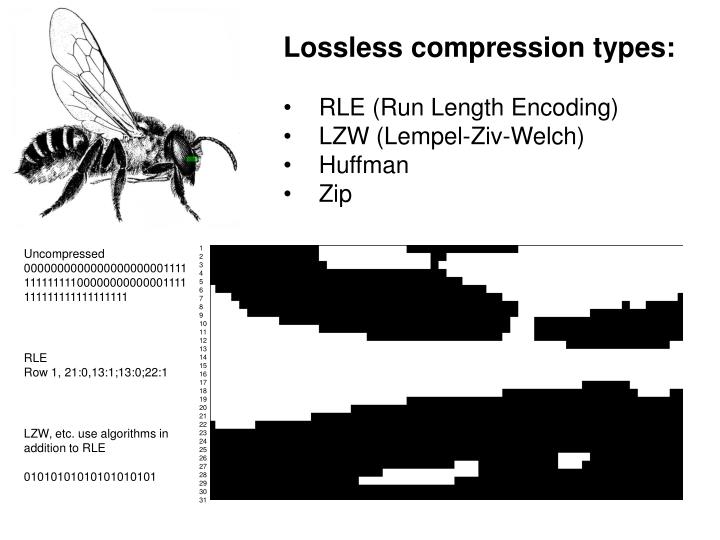 Lossless compression types: