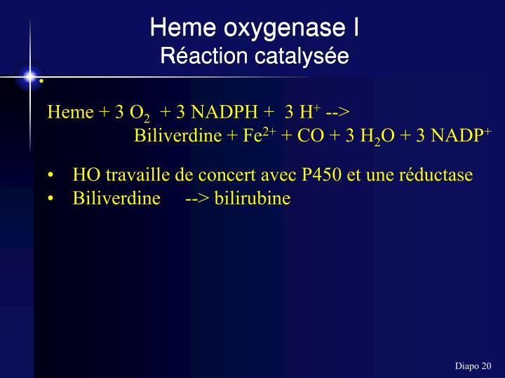 Heme oxygenase I