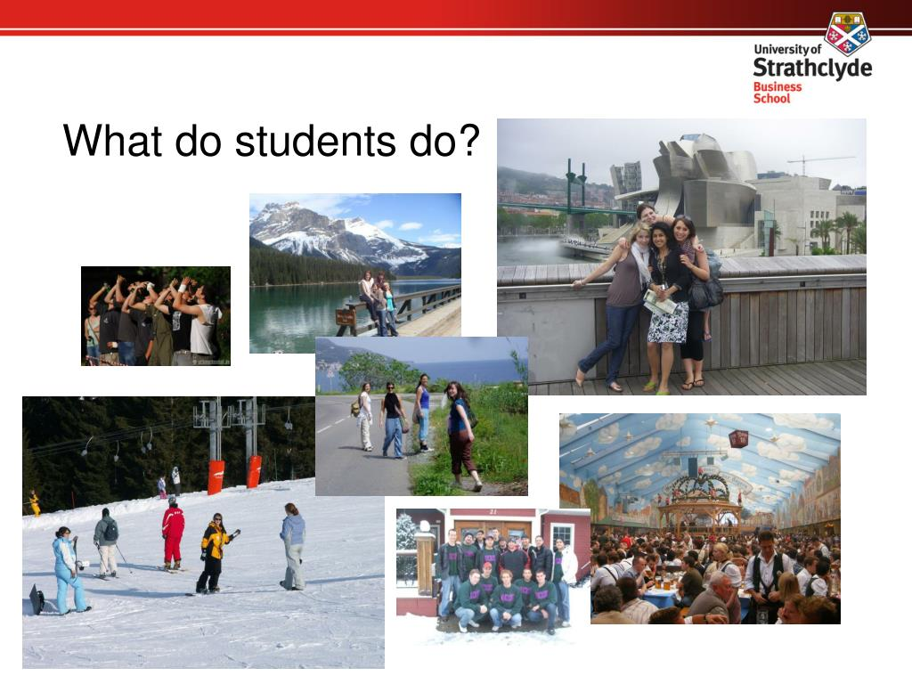 What do students do?