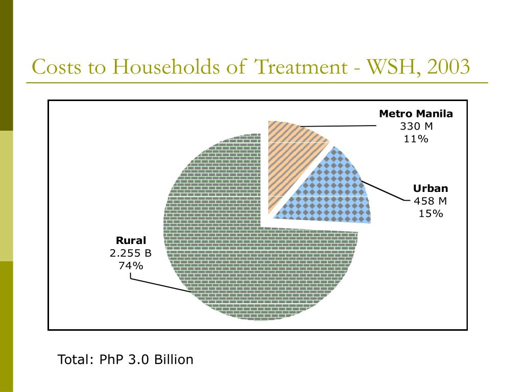 Costs to Households of Treatment - WSH, 2003