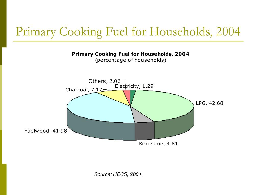 Primary Cooking Fuel for Households, 2004