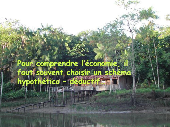 Pour comprendre l'économie, il faut souvent choisir un schéma hypothético – déductif…