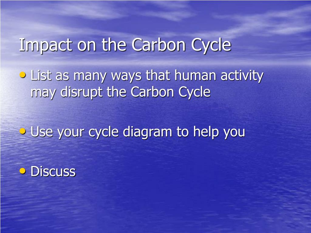 Impact on the Carbon Cycle