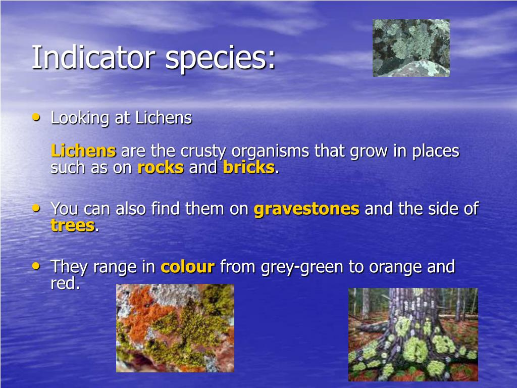 Indicator species: