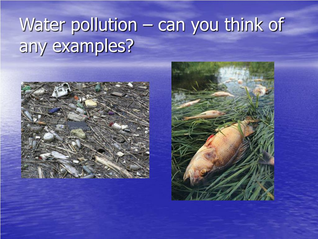 Water pollution – can you think of any examples?