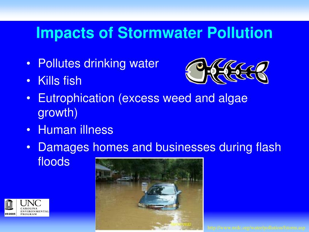 Impacts of Stormwater Pollution