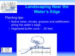 landscaping near the water s edge