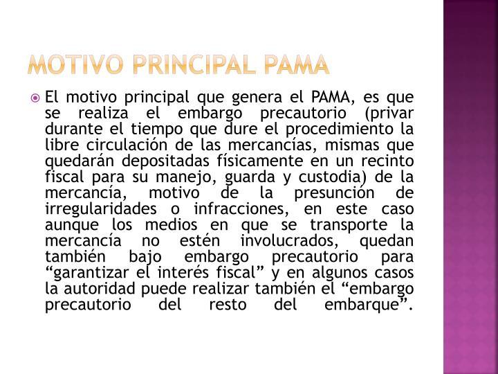 MOTIVO PRINCIPAL PAMA
