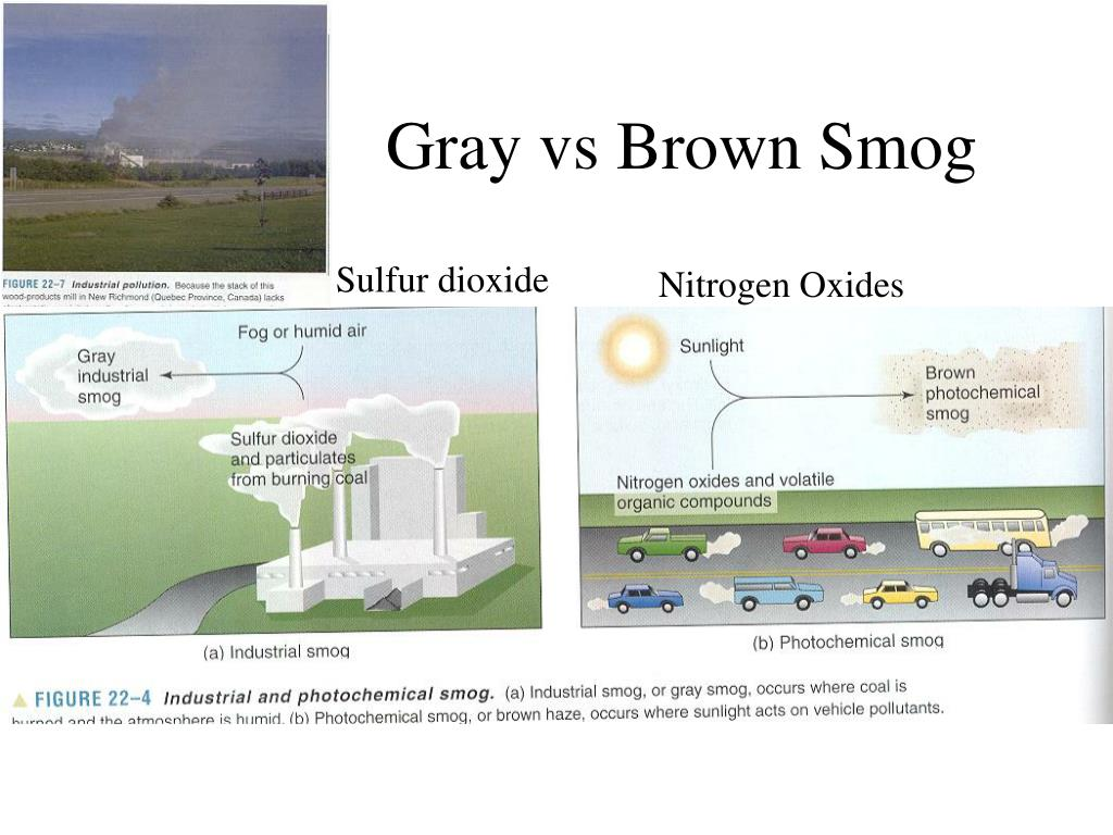 Gray vs Brown Smog