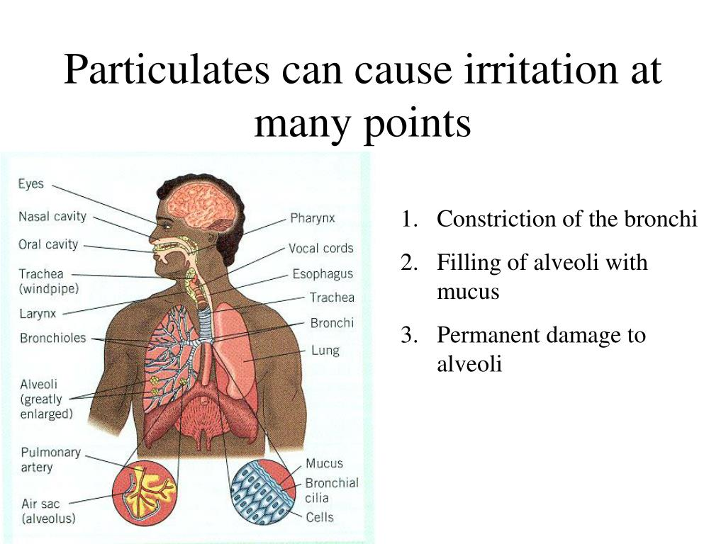 Particulates can cause irritation at many points