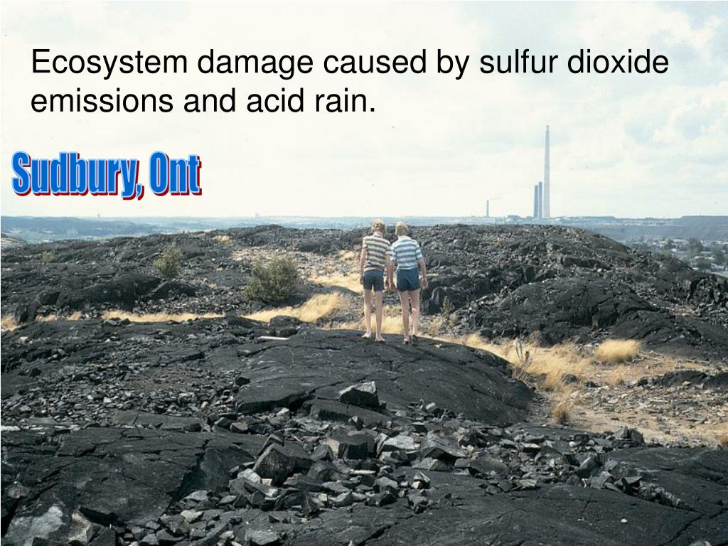 Ecosystem damage caused by sulfur dioxide