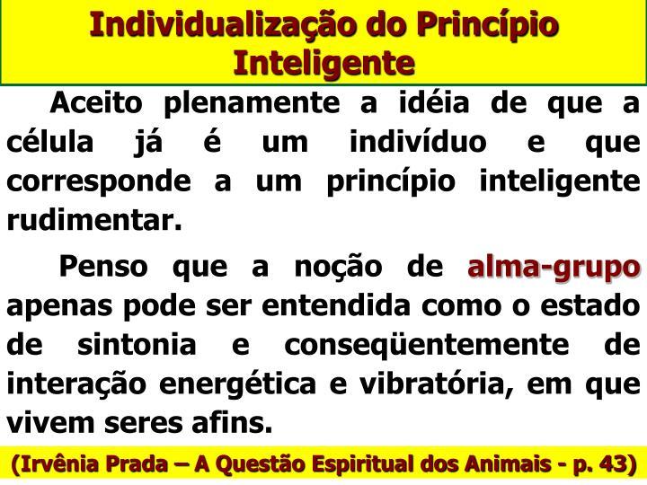 Individualização do Princípio Inteligente