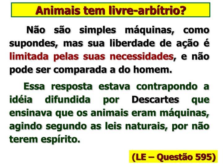 Animais tem livre-arbítrio?