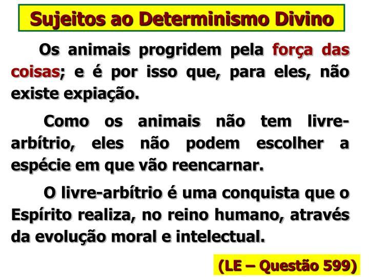 Sujeitos ao Determinismo Divino