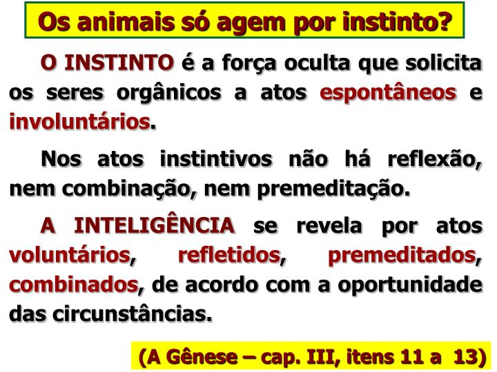 Os animais só agem por instinto?