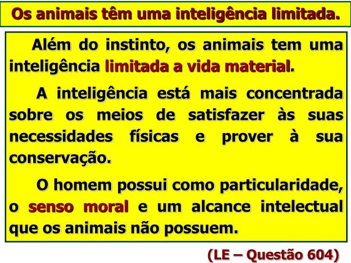 Os animais têm uma inteligência limitada.