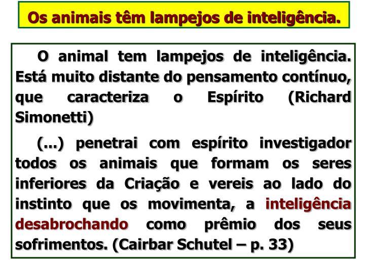 Os animais têm lampejos de inteligência.