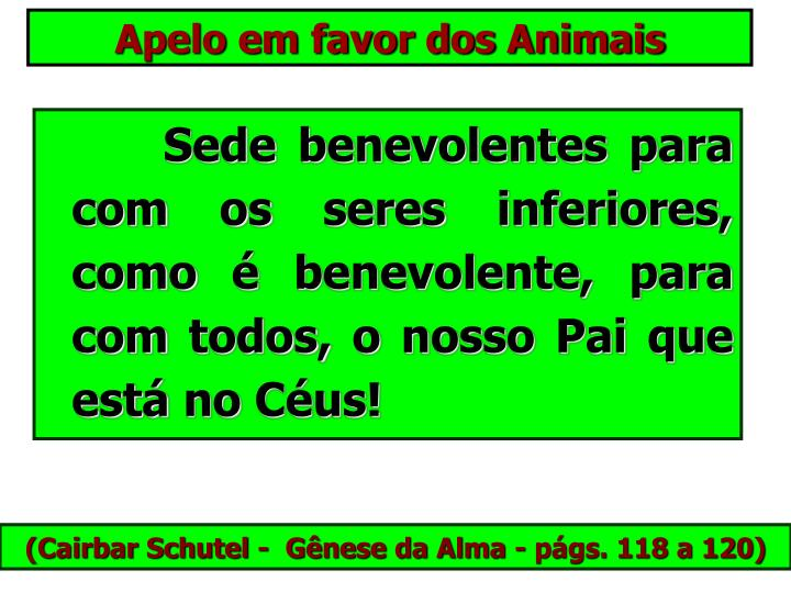 Apelo em favor dos Animais