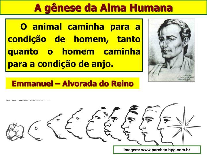 A gênese da Alma Humana