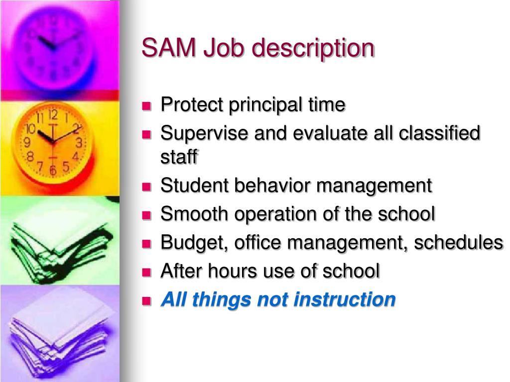 SAM Job description