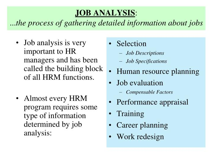 Job analysis the process of gathering detailed information about jobs