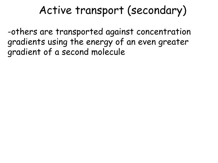 Active transport (secondary)