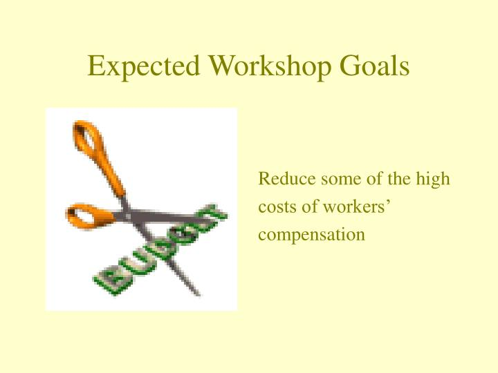 Expected workshop goals