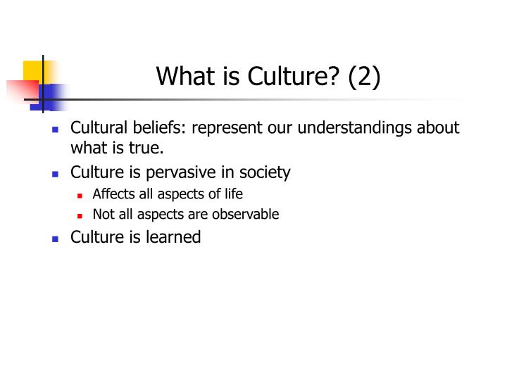 What is Culture? (2)