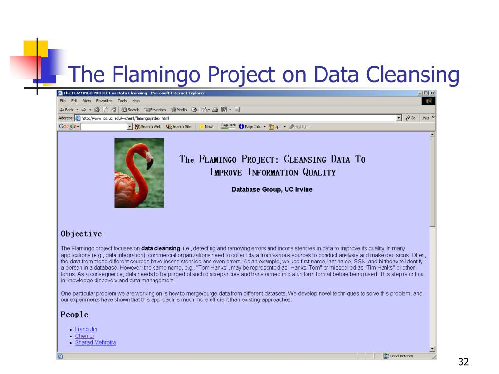 The Flamingo Project on Data Cleansing