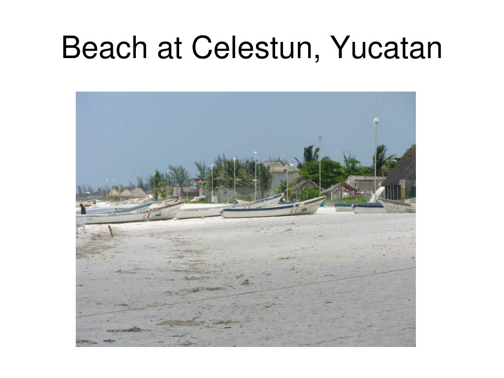 Beach at Celestun, Yucatan