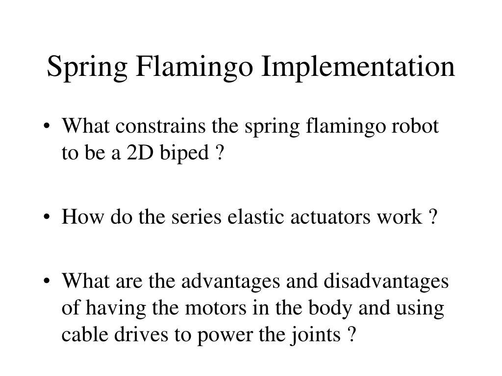 Spring Flamingo Implementation