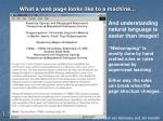 what a web page looks like to a machine