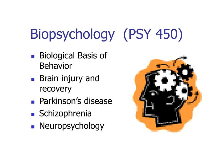 Biopsychology  (PSY 450)