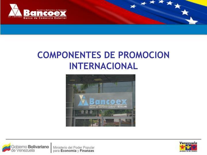COMPONENTES DE PROMOCION INTERNACIONAL