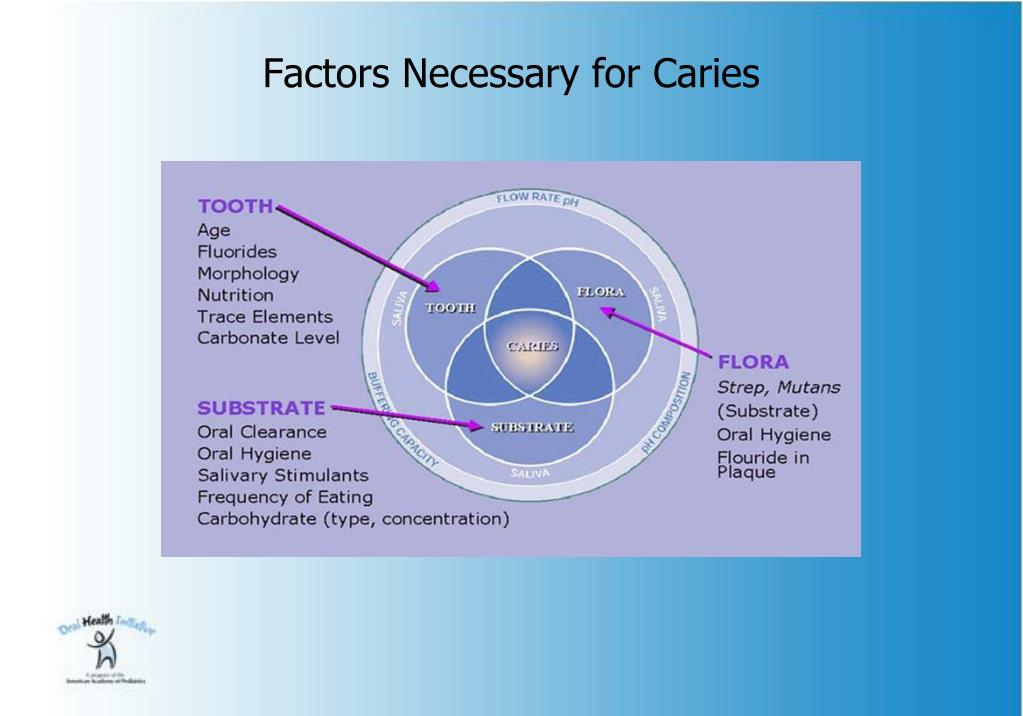 Factors Necessary for Caries