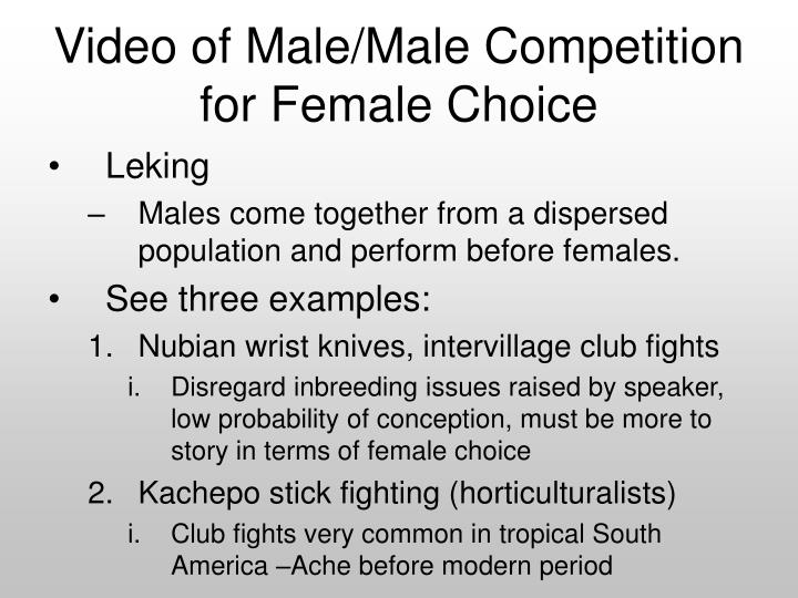 Video of Male/Male Competition for Female Choice